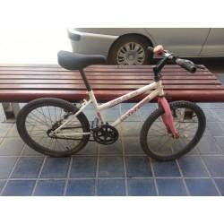 Bicicleta de montaña TNT