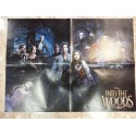 Póster doble: Into the woods/Sons