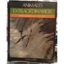 Animales extraordinarios. Migraciones de animales.